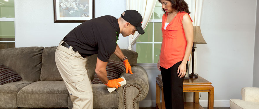 Monroe Township, NJ carpet upholstery cleaning
